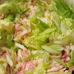 ポン酢しょうゆ/ルクルーゼ/白菜と豚肉のミルフィーユ煮/フォロー大歓迎/フード/おうちごはん 忙しくって疲れた日の夕ご飯。 重ねて切っ…