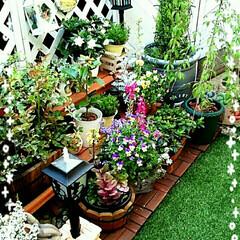 ガーデンオブジェ/ガーデン こんばんは😃🌃 イエモ部の皆さんすみませ…
