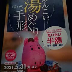 パフェ/シャインマスカット/本/温泉 温泉の本を千円で購入。田沢湖ゆぽぽ。1人…(2枚目)
