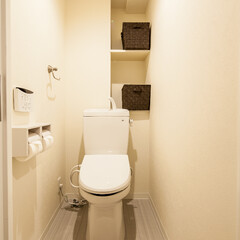 トイレ/棚/愛知/名古屋 ふちなしのトイレでお掃除が楽になりました。