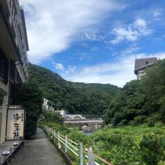箱根湯本/夏休み/湯葉丼/箱根/令和の一枚/至福のひととき/... 箱根へ旅行に行ってきました〜〜 箱根は東…