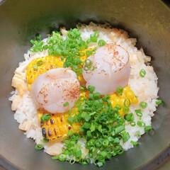 和食/レストラン/釜飯/ご飯 ご飯派の投稿💓🍚 釜飯の類がだーーいすき…