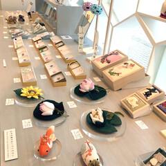 金沢/雑貨/和雑貨/お店 金沢の21世紀美術館近くにある和のギャラ…
