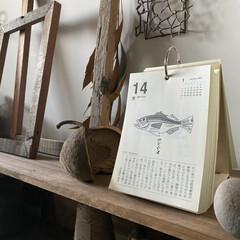 雑学/昭和の時代/活字を読む/日めくりカレンダー 最近スマホの普及により活字を読むことが減…