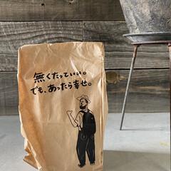 コーヒー豆/お土産 確かに! それがコーヒー!    面白い…
