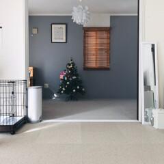 和室から洋室/クリスマス2019/DIY/収納/住まい/暮らし/... リビング隣の和室を洋室に 奥行きを感じら…