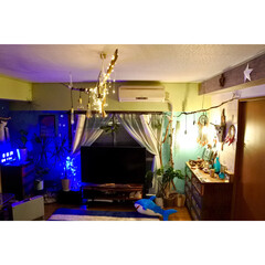 バッファロースカル/ドリームキャッチャー/リビング/夜/間接照明/流木ライト/... 夜のリビングは 沢山の間接照明で過ごしま…