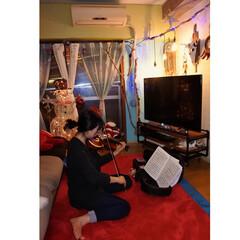 楽器/音楽/窓枠DIY/イルミネーション/二重窓DIY/バッファロースカル手作り/... 優しいマダムの皆様へ 【おめでとうメッセ…(1枚目)