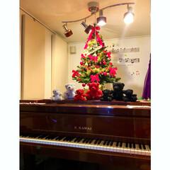 ウォールステッカー/KAWAI/グランドピアノ/ピアノ/防音室/ぬいぐるみ/... いつもリビングのソファで座ってる クマち…