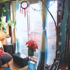 窓枠DIY/ドリームキャッチャー自作/海外インテリア/海を感じるインテリア/イルミネーション/ポインセチア/... 寒がりな私の冬支度 今年も自作の簡易二重…