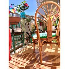 南側/籐の椅子/海を感じるインテリア/折り畳み自転車/モンステラ柄/竹ラグ/... いいお天気やねー♬ 南側のベランダに 以…