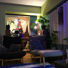 夜のリビング/黄緑の壁/ドリームキャッチャー自作/モンステラ/青い壁/防音室/... 一枚前の写真の 引きのアングル  マンシ…