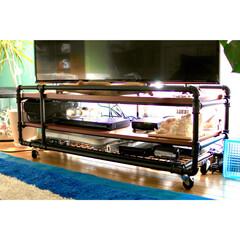 インダストリアル/ベルメゾン/ガス管でテレビ台/テレビ台/ガス管/55型テレビ/... 我が家のテレビ台は ベルメゾンのものです…