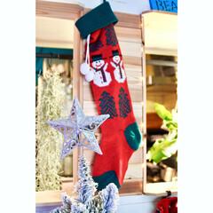 コウモリラン/チランジアウスネオイデス/靴下/覗き窓を作る/壁をぶち抜く/セルフリノベーション/... クリスマスの朝~♬  子供が大きくなっち…