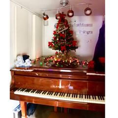 ウォールステッカー/防音室の中/ウォルナット/KAWAI/グランドピアノ/クリスマスツリー/... 20年以上飾ってる 昔ながらのクリスマス…