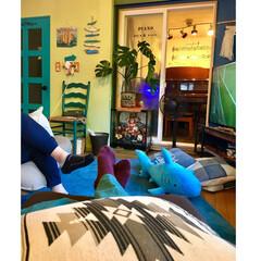 五月人形/グランドピアノ/防音室/オルテガ柄/サメ/海を感じるインテリア/... 山善扇風機 モニター中  ウォーリーを探…