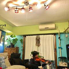 海外インテリア/セルフリノベーション/練習中/娘/窓枠DIY/黄緑の壁/... 普段、天井照明はつけずに ほぼ間接照明で…