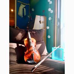 青い壁/LEDガーランド/水色の壁/窓枠DIY/ガラスブロック/リクライニングソファ/... 娘のヴィオラ 2回目の舞台へ  演奏会 …