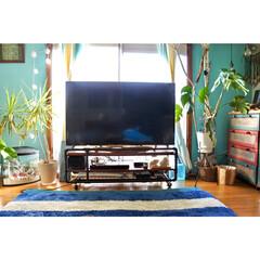 ドリームキャッチャー/ボーダーラグ/ドラセナコンシンネ/水色の壁/窓枠DIY/珊瑚/... 一枚前のテレビボードを引きアングルで! …
