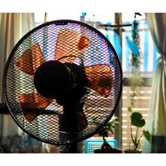 家電/茶色の扇風機/モニター中/YAMAZEN扇風機/山善/インテリア 山善の扇風機モニター中  どうかねー?こ…