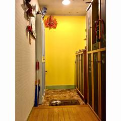 スリランカのお面/片付け中/地震後/モカクリーム/イマジンチョークボードペイント/黒板塗料/... お久しぶりの玄関です 以前は、大きなミラ…