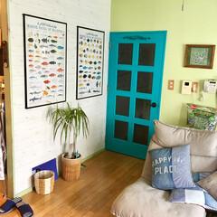 モルディブ/魚のポスター/海外インテリア/木目壁紙/黄緑の壁/セルフリノベーション/... リビングから廊下へのドアを 水性塗料でペ…