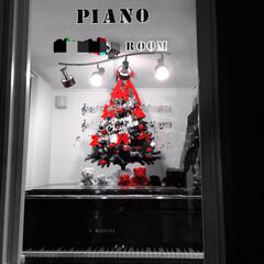 ラブベア/ウォールステッカー/防音室/ピアノの上/クリスマスツリー/インテリア 20年以上使っているクリスマスツリー  …