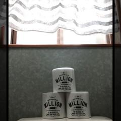 トイレットペーパーカバー/クリアファイル/トイレットペーパー/トイレ/DIY/100均/... トイレットペーパーのカバーをクリアファイ…