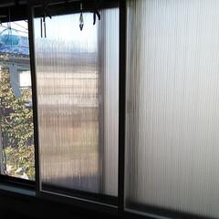 断熱✨目隠し(笑)/リミアの冬暮らし 断熱✨目隠し(笑)二重窓 ポリカで作って…