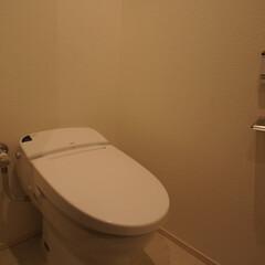 トイレ 配管から全て新設しています