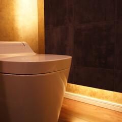 トイレ 間接照明で洗練された印象