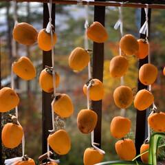 秋/グルメ 干し柿のある風景大好き💕 可愛い💕   …