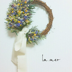 暮らし/雑貨/花が好き/花と緑がある暮らし/ドライフラワーのある暮らし/インテリアフラワー/... スターチスの小花リース