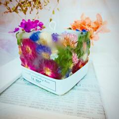 ハンドメイド雑貨/インテリア雑貨/フラワー/Flower/ドライフラワー/バラ/... ドライフラワーのバラで作ったボタニカルキ…