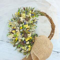 花に癒される/花に囲まれたい/花で元気に/花のある生活/フラワーギフト/フラワーインテリア/... ドライフラワーの小花リース