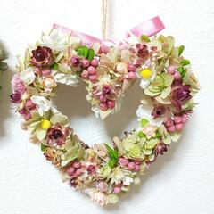 ミニリース/玄関に春を/可愛い/お花/プリザーブドフラワーリース/ドライフラワーリース/... 今日もリース作り♡