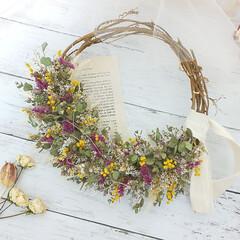 インテリア雑貨/花のある生活/ドライフラワーのある暮らし/ミモザ/ユーカリ/小花/... ドライフラワーの小花リース♪