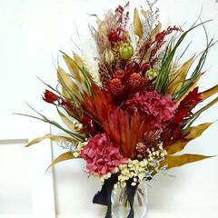 ドライフラワーのある生活/花が好き/赤/レッドカラー/赤い花/花のある暮らし/... ドライフラワースワッグ✿(2枚目)