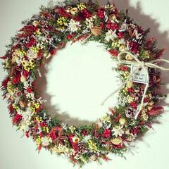 クリスマス雑貨/クリスマスインテリア/ドライフラワー/インテリア雑貨/フラワーリース/リース/... クリスマスリース♪ ようやくクリスマス雑…
