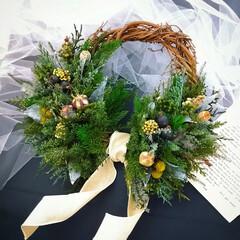 みどりのインテリア/クリスマス飾り/花のある生活/緑のある暮らし/ドライフラワー/プリザーブドフラワー/... グリーンリース