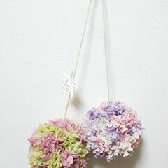 ハンドメイド雑貨/インテリア雑貨/花がある暮らし/花が好き/プリザーブドフラワーアレンジメント/トピアリーボール/... トピアリーボール♡