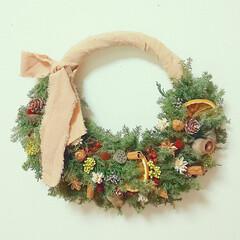 Xmas/ハンドメイド雑貨/花のある暮らし/プリザーブドフラワー/木の実リース/フラワーリース/... クリスマスリース♪(1枚目)