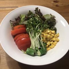 健康管理/ダイエット/健康的/野菜室/インナービューティー/健康/... 今日は野菜たっぷりのうどん😊相方さんに作…