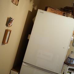 ホワイト/tower/キッチンカウンター/冷蔵庫/キッチン/3COINS/... 冷蔵庫がやってきた(*´˘`*)(1枚目)