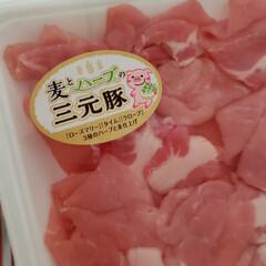 オタフク お好みソース 業務用 2.1kg(ウスター、中濃、お好みソース)を使ったクチコミ「今夜は焼きそば 私は料理に応じてお肉をあ…」(1枚目)