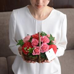 母の日/母の日のお花/ギフト/お花/花/フラワー/... 母の日ギフト  選べるアレンジメント M…