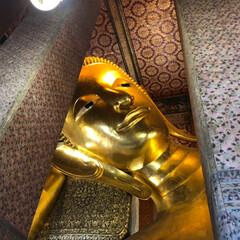 2日目/バンコク/タイ/海外研修/海外/おでかけ/... タイの海外研修2日目🙏 ワットポーを見学…