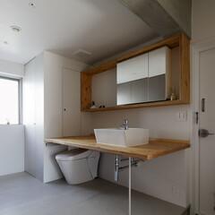 開放的なトイレ/洗面室/玄関 使わない時は存在感のないトイレです。