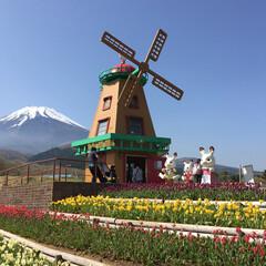 ぐりんぱ/富士山 富士山 ぐりんぱ  風が強いので薄着は禁…