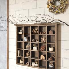 ハロウィン/ドライフラワー/カフェ風インテリア/セルフリノベーション/リビング/コレクションボックス/... こんばんは✨  リビングの壁を少し模様替…